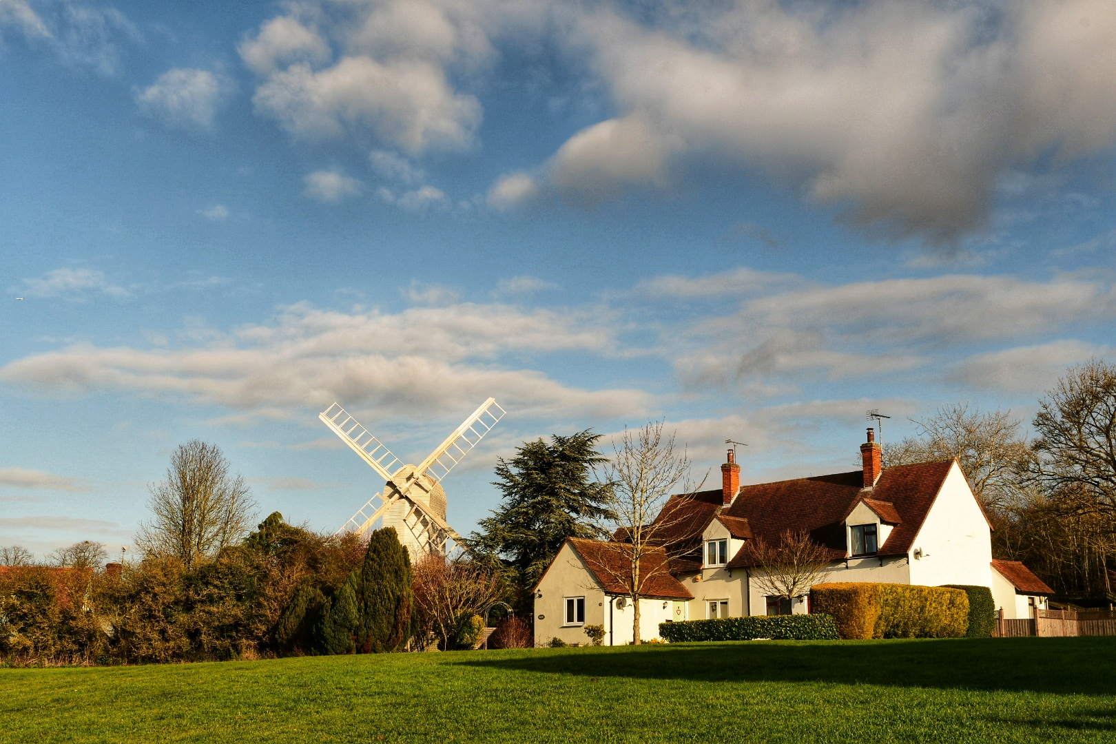 A picture of the braintree district with a windmill and a row of houses